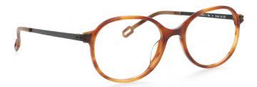 Beasley C105 // Odette Lunettes